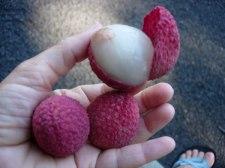 Фото: вкусный плод Личи