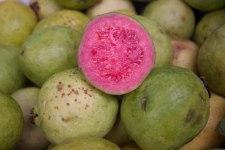 Фото: фрукт Гуава