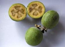 Фото: фрукт Фейхоа