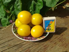 Фото: фрукт Алыча